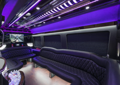 Leather seating party bus